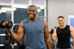Muscle man dumbbell Stock Image