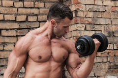 Muscle man. In front of brick wall Stock Images