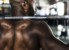 Muscle man at the gym Stock Images