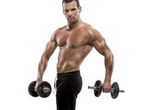 Muscle man holding weights Royalty Free Stock Photography