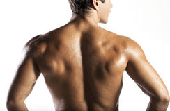 Muscle man. A naked body of European latin muscle man showing off royalty free stock images