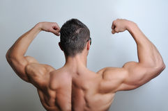 Muscle man posing Royalty Free Stock Image