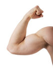 Muscle man's hand. Royalty Free Stock Image