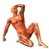Muscle man in a sitting posture. 3D Rendering Muscle man in a sitting posture Stock Photography