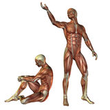 Muscle man standing and sitting. 3D Rendering - Muscle man standing and sitting Stock Images