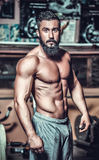 Muscle man who is posing Royalty Free Stock Photo