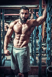 Muscle man who is posing Royalty Free Stock Images