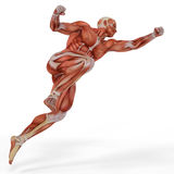 Muscle medical man goalkeeper jump Stock Images