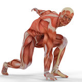 Muscle medical man ready to run Stock Photography