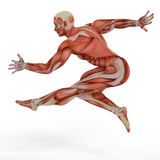 Muscle medical mans jump street dance jump Stock Images