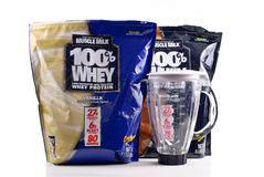Muscle Milk Whey Protein Stock Images