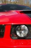 muscle red Στοκ Εικόνες