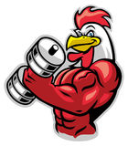 Muscle rooster holding the barbell Royalty Free Stock Photography
