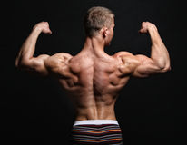 Muscle sexy back of bodybuilder Royalty Free Stock Photos