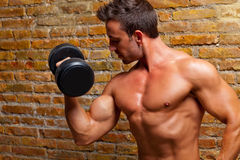 Free Muscle Shaped Body Man With Weights On Brick Wall Royalty Free Stock Photos - 22845248
