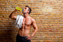 Muscle shaped man at gym relaxed drinking. Energy drink Stock Image