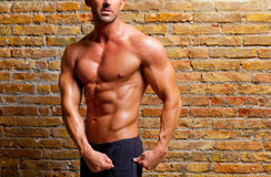 Muscle shaped man posing on gym brick wall Royalty Free Stock Image