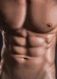 Muscled αρσενικό πρότυπο με τα ισχυρά όπλα Στοκ Εικόνα