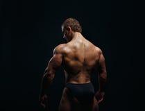Muscled αρσενικό πρότυπο που παρουσιάζει πλάτη του Στοκ φωτογραφία με δικαίωμα ελεύθερης χρήσης