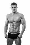Muscled мыжская модель Стоковое Изображение RF