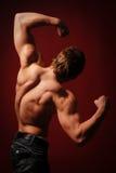 Muscled мыжская модель Стоковое Изображение