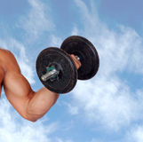 Muscled arm lifting weights Stock Photography