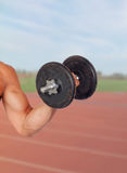 Muscled arm lifting weights Royalty Free Stock Photos