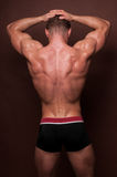 Muscled back Stock Images
