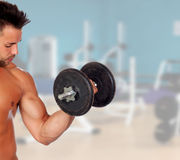 Muscled guy lifting weights Royalty Free Stock Images
