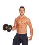Muscled guy lifting weights Stock Images