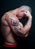 Muscled male model Royalty Free Stock Images