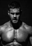 Muscled male model Konstantin Kamynin Royalty Free Stock Photography