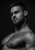 Muscled male model Konstantin Kamynin. Muscled male model in studio Royalty Free Stock Image