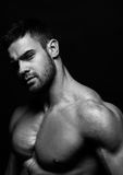 Muscled male model Konstantin Kamynin. Muscled male model in studio Stock Photo