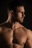 Muscled male model Konstantin Kamynin. Muscled male model in studio Royalty Free Stock Photos