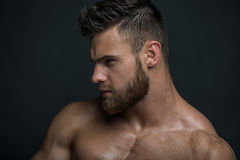 Muscled male model Konstantin Kamynin. Muscled male model in studio Stock Photos