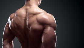 Muscled male model showing his back. Bodybuilder showing his back and biceps muscles, personal fitness trainer. Strong man flexing his muscles Royalty Free Stock Image