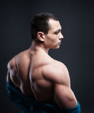 Muscled male model showing his back Royalty Free Stock Image
