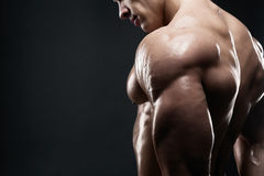 Muscled male model showing his back. Bodybuilder showing his back and biceps muscles, personal fitness trainer. Strong man flexing his muscles Royalty Free Stock Photos