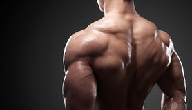 Muscled male model showing his back. Bodybuilder showing his back and biceps muscles, personal fitness trainer. Strong man flexing his muscles Stock Images