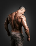 Muscled male model showing his back. Bodybuilder showing his back and biceps muscles, personal fitness trainer. Strong man flexing his muscles Stock Photo