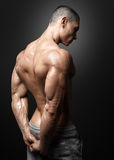 Muscled male model showing his back. Bodybuilder showing his back and biceps muscles, personal fitness trainer. Strong man flexing his muscles Royalty Free Stock Images