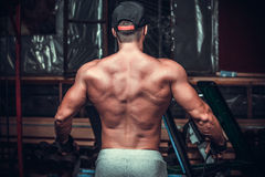 Muscled male model showing his back Royalty Free Stock Photography