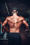 Muscled male model showing his back Stock Photography