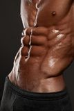 Muscled male model in studio Royalty Free Stock Photo