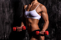 Muscled woman. With red barbells Stock Photo