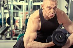 Muscles Stock Photos