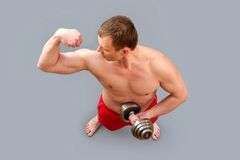 Muscles Royalty Free Stock Images