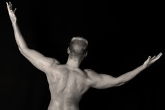 muscles Στοκ Εικόνες