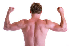Muscles. Man showing his back muscles Stock Image